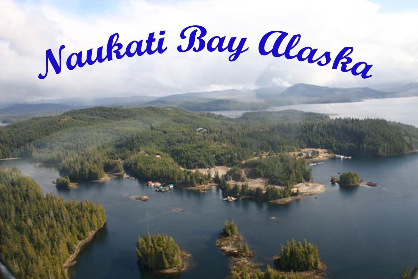 AlaskanGuy 2