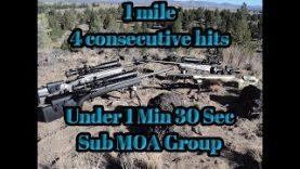 1 Mile .338 Lapua 4 hits under 1 min 30 sec Sub MOA – Long range shooting – ELR LRS