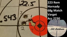 223 Rem, Hornady 68g Match; Varget, Accurate 2230