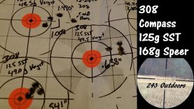 308 Compass; 125g SST and Speer 168g