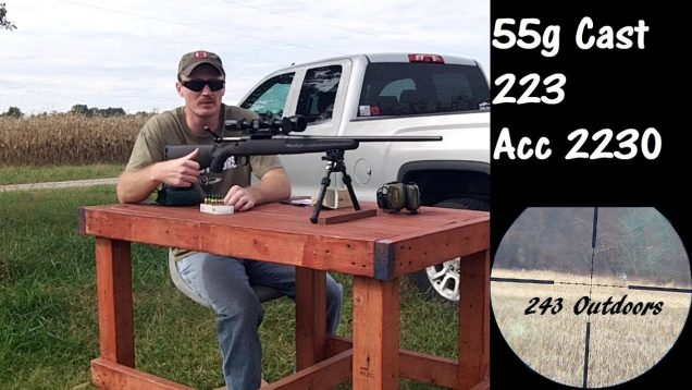 55g Cast 223 and Accurate 2230