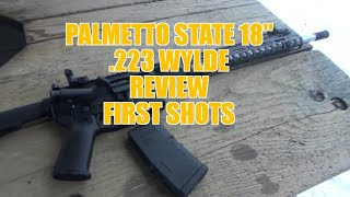 Palmetto State 18″ AR-15 .223 Wylde Build First Shots Review