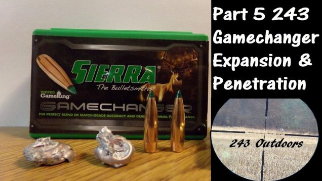 Part 5: 243 90g Sierra Gamechanger Expansion & Penetration; Final Thoughts