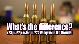 Picking the right AR cartridge for your needs