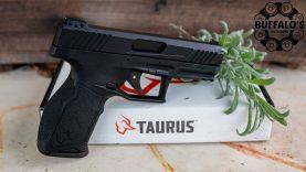 Taurus TX-22 RAISING THE BAR