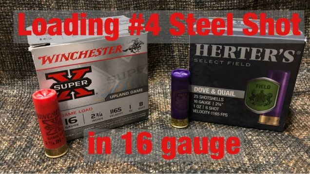Loading #4 steel shot in the 16 gauge