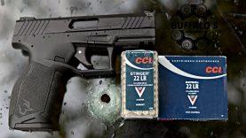 Taurus TX22 and CCI Ammunition ~ Windshield
