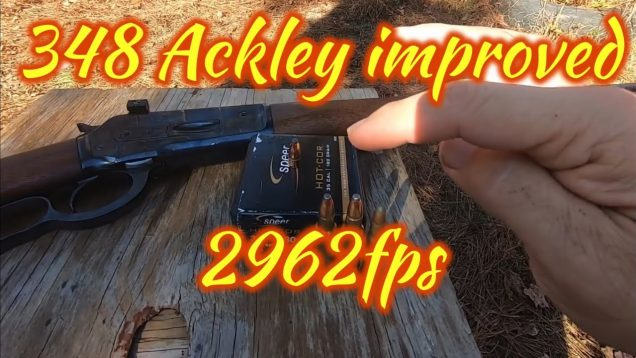 348 Ackley Improved, with the Speer 180 gr 35 cal