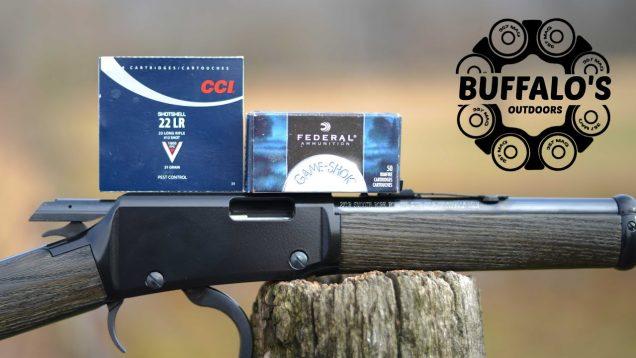 Henry Garden Gun ~ Q&A