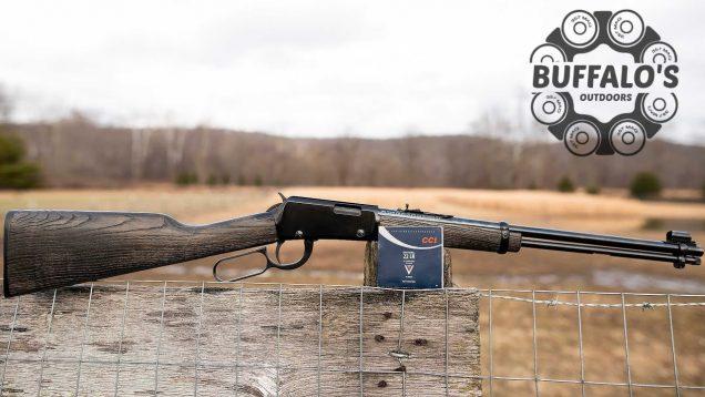 Patterning .22LR Shotshells ~ Henry H001 and Garden Gun