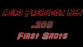 Aero Precision M5 308 Winchester First Shots
