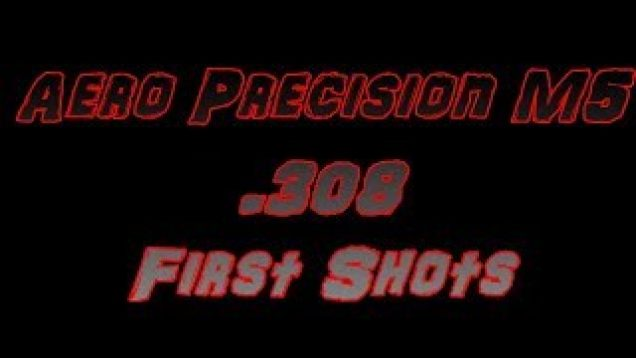 Aero Precision M5 308 Winchester First Shots