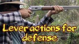 Lever actions for defense?