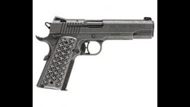 """Sig 1911 """"We The People"""""""