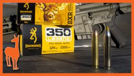 Browning Joins the Party! 350 Legend Loads for Hunting & Plinking – Ballistic Gel at 100 & 200 Yards