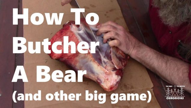 How To Butcher a Bear (and other big game)