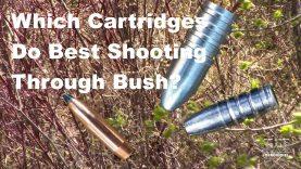 Which Cartridges Do Best Shooting Through Bush?
