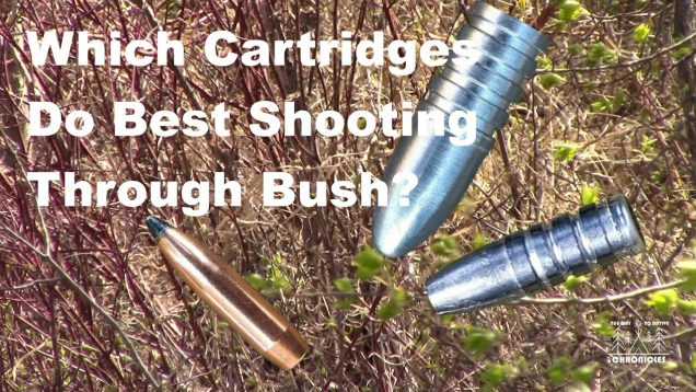 Which Cartridges Do Best Shooting Through Bush?