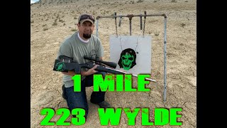 1 Mile Mighty Mouse 223 Wylde