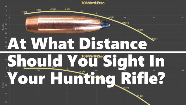 At What Distance Should You Sight In Your Hunting Rifle?
