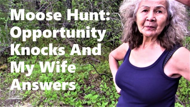 Moose Hunt: Opportunity Knocks and My Wife Answers