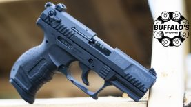 Walther P22 ~