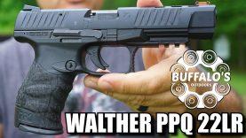 Walther PPQ M2 .22lr ~ Full Size Plinker/Trainer