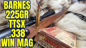 .338 Win Mag Barnes 225gr TTSX  Ruger M77 Review