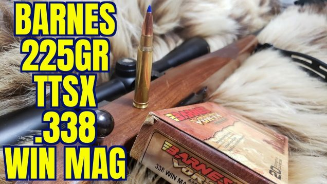 .338 Win Mag Barnes 225gr TTSX  Ruger M77 Review