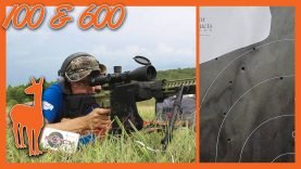 6mm ARC Accuracy at 100 and 600 Yards – CMMG Endeavor 300