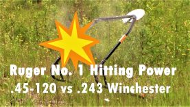 Ruger No. 1 Hitting Power – .45-120 vs .243 Comparison