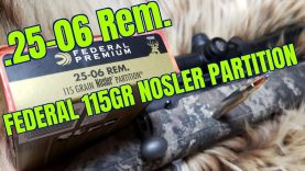 .25-06 Rem Federal 115gr Nosler Partition Review