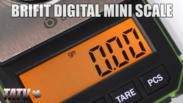 Brifit Digital Mini Scale Review