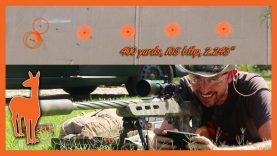 243 Winchester 400 Yard Accuracy – Savage Telekinesis Rifle