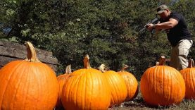 Pumpkin Destruction 🎃 (Full Auto Friday)