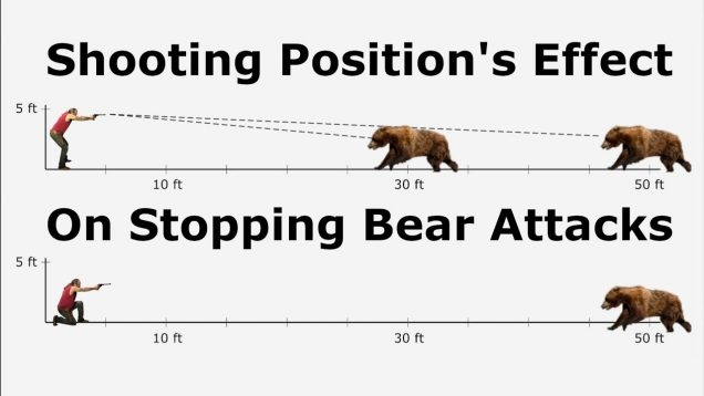 Shooting Position's Effect On Stopping Bear Attacks