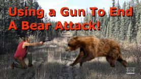 Using a Gun To End A Bear Attack!