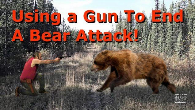 Using a Gun To End A Bear Attack!