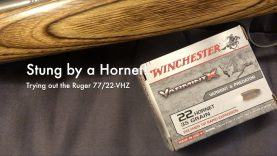 WCChapin | Stung by a Hornet! – Trying out the Ruger K77/22-VHZ