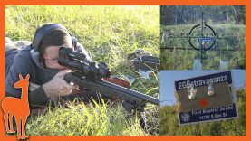 Bergara BXR Carbon vs the Rimfire Egg Challenge – The Social Regressive