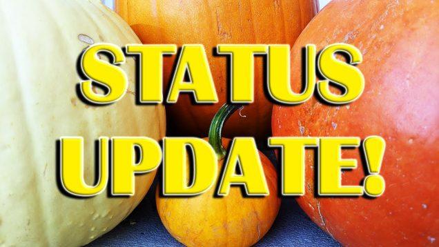 Halloween Channel Status Update!  Where Taco Been!?