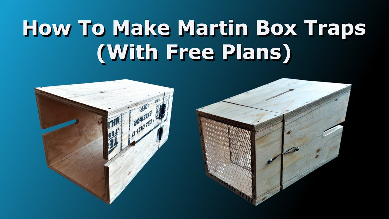 How To Make Martin Box Traps (With Free Plans)