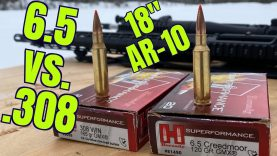 6.5 Creedmoor vs. 308 Win for Hunting in Alaska Part 2 With Chuke's Outdoor Adventures