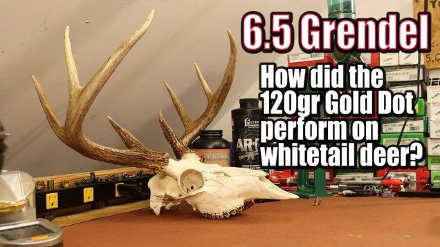 Deer load performance report – 120gr Speer Gold Dot in 6.5 Grendel