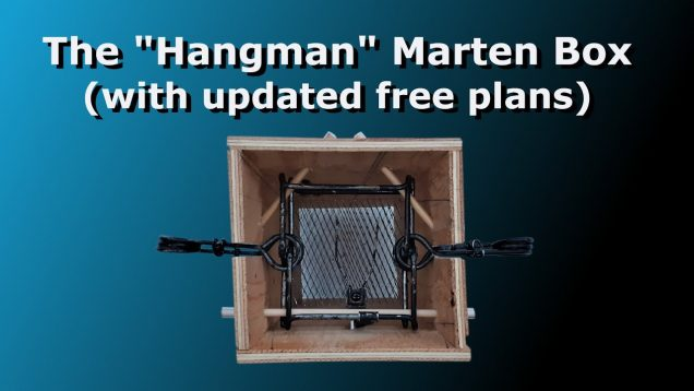 "The ""Hangman"" Marten Box (with free, updated plans)"