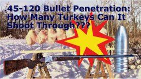 45 120 Bullet Penetration: How Many Turkeys Can It Shoot Through?