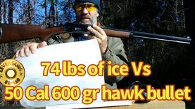 600 gr Hawk bullet versus 74 pounds of ice, lever action elephant rifle