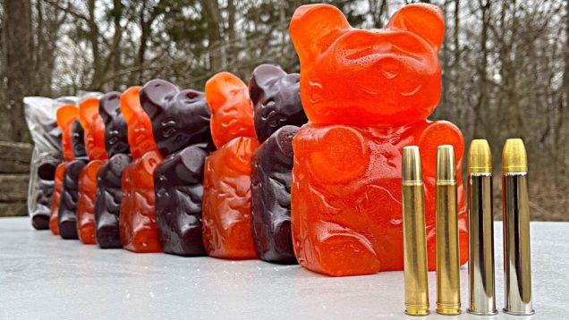 Elephant Rifles vs GIANT Gummy Bears 🐻
