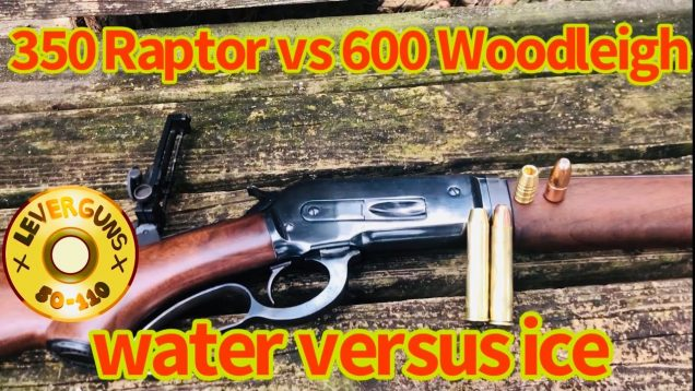 Lever action elephant rifle, 600gr Woodleigh VS 350gr Raptor