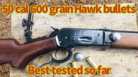 600 grain 50 cal Hawk bullets out of an 1886 lever action elephant rifle